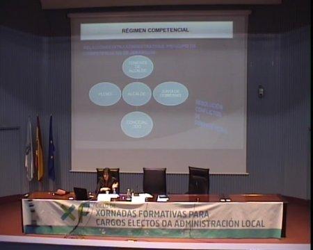 Organización municipal complementaria: tipoloxía e funcións